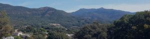 lotissement-olivaggio-plaine-de-pisciatello-Z